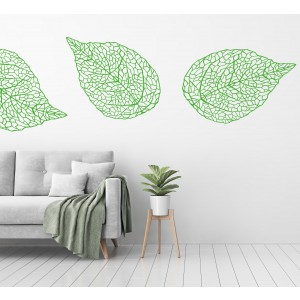 Listje z vidno strukturo